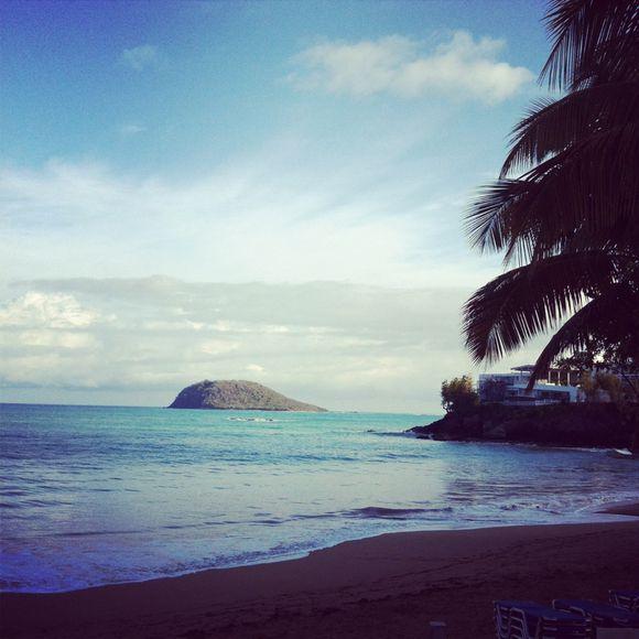 Guadeloupe. Carte postale #1
